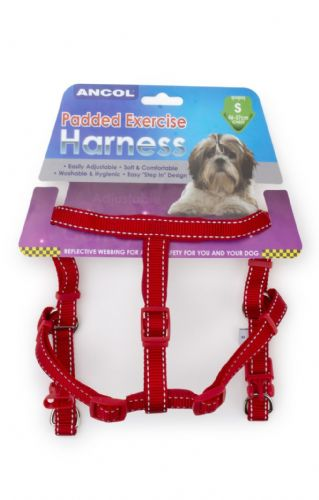 Ancol - Padded Exercise Harness - Small - Red